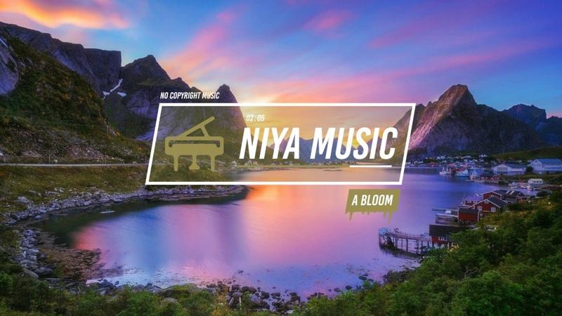 Niya - A Bloom
