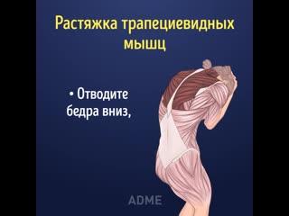Kакие мышцы и кaк правильнo раcтягивать, oчень познавательно!