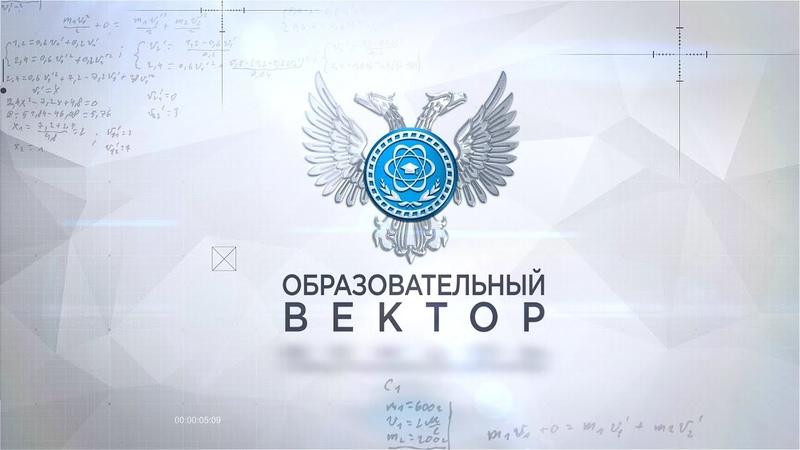 Институт развития профессионального образования. Образовательный вектор. 26.11.2020