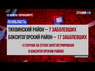 Коронавирус: информация по Бокситогорскому району на 22 апреля