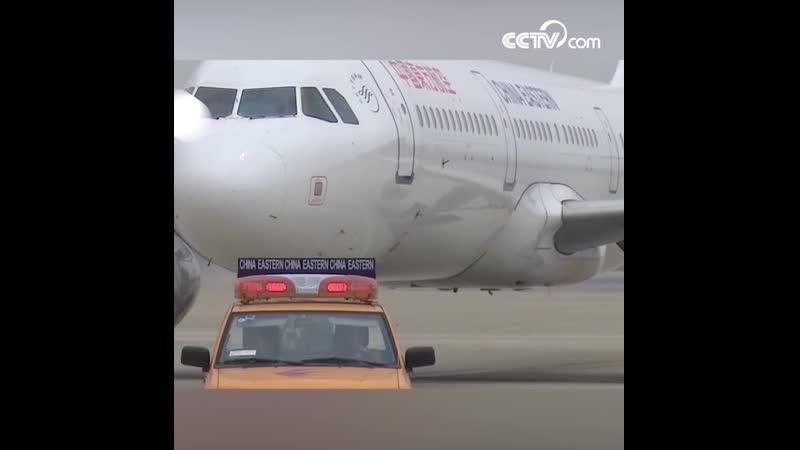 Самолёт вернулся из-за самовозгорания зарядногоустройства