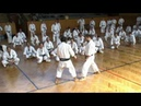 Kihon applications by Sadashige Kato 9th dan shotokan