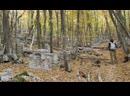 Бахчисарай Караимское кладбище Балта - Тиймез.