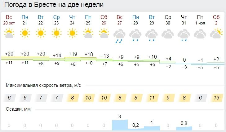 Температурный рекорд за всю историю метеонаблюдений побит в Беларуси. Но впереди - заморозки