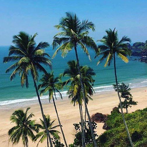 Тур в Гоа на 8 ночей за 22800 c человека в апреле