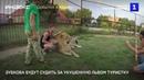 Зубкова будут судить за укушенную львом туристку