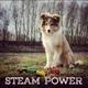 Steam Power - Kill U Dead / In the Ground