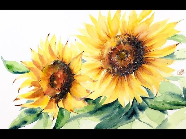 Watercolor Sunflowers Painting Demo