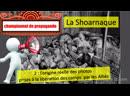La Shoarnaque 2 l'origine réelle des photos prises par les Alliés à la libération des camps