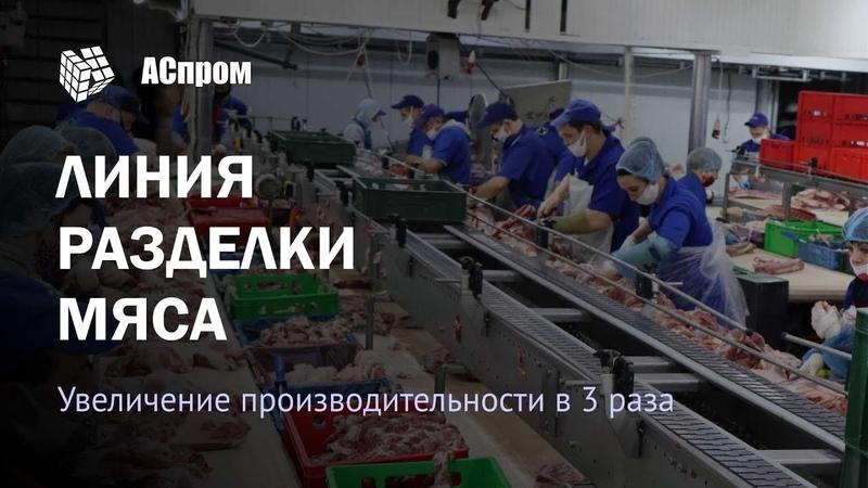 Конвейерная линия для обвалки и жиловки мяса