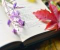 Поэзия и прочие искусства; Об искусстве и творчестве