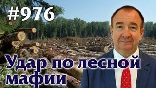 Игорь Панарин: Мировая политика #976. Удар по лесной мафии