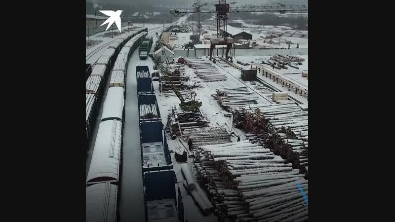 Журналисты «КП» Владимир Ворсобин и Виктор Гусейнов отправились из Москвы в Сибирь, чтобы увидеть своими глазами, кто хищнически