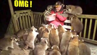 Супер позитив на целый день! Невероятно смешные и милые моменты с животными!