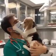 id_8893 Не для слабонервных Буйный пациент пытается сорвать маску с лица врача