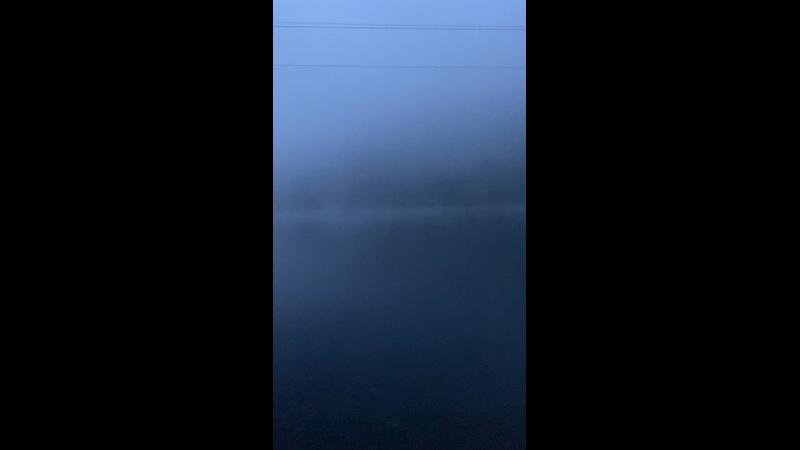 Видео от I ONE TEAM открытая вода триатлон плавание