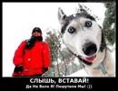 Фотоальбом Виталия Збираника