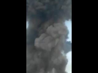 Video by Друзья Палестины