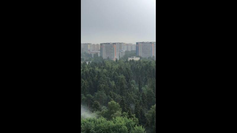 Видео от Светланы Овчинниковой