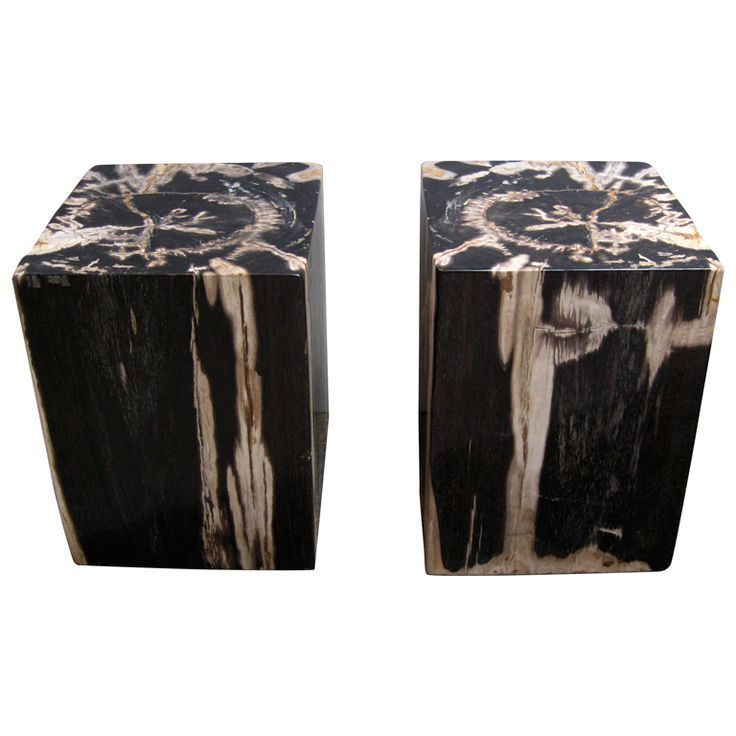 Pair Of Petrified Wood Side Tables / Stools