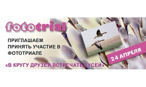 Фестиваль журавлиная родина 2021 Сергиев-Посад