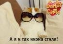 Фотоальбом Дианы Демченко