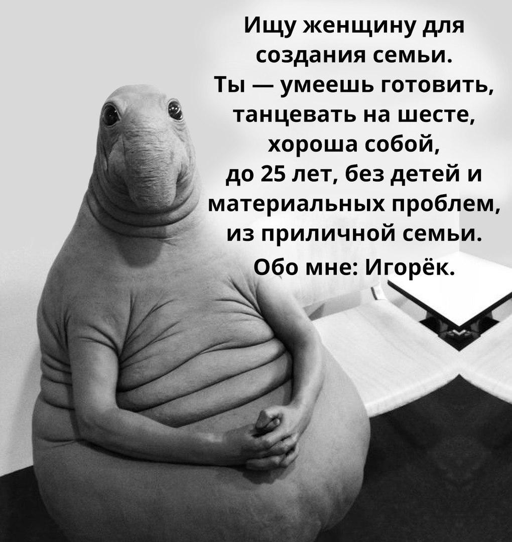 фото из альбома Игоря Григорьева №2
