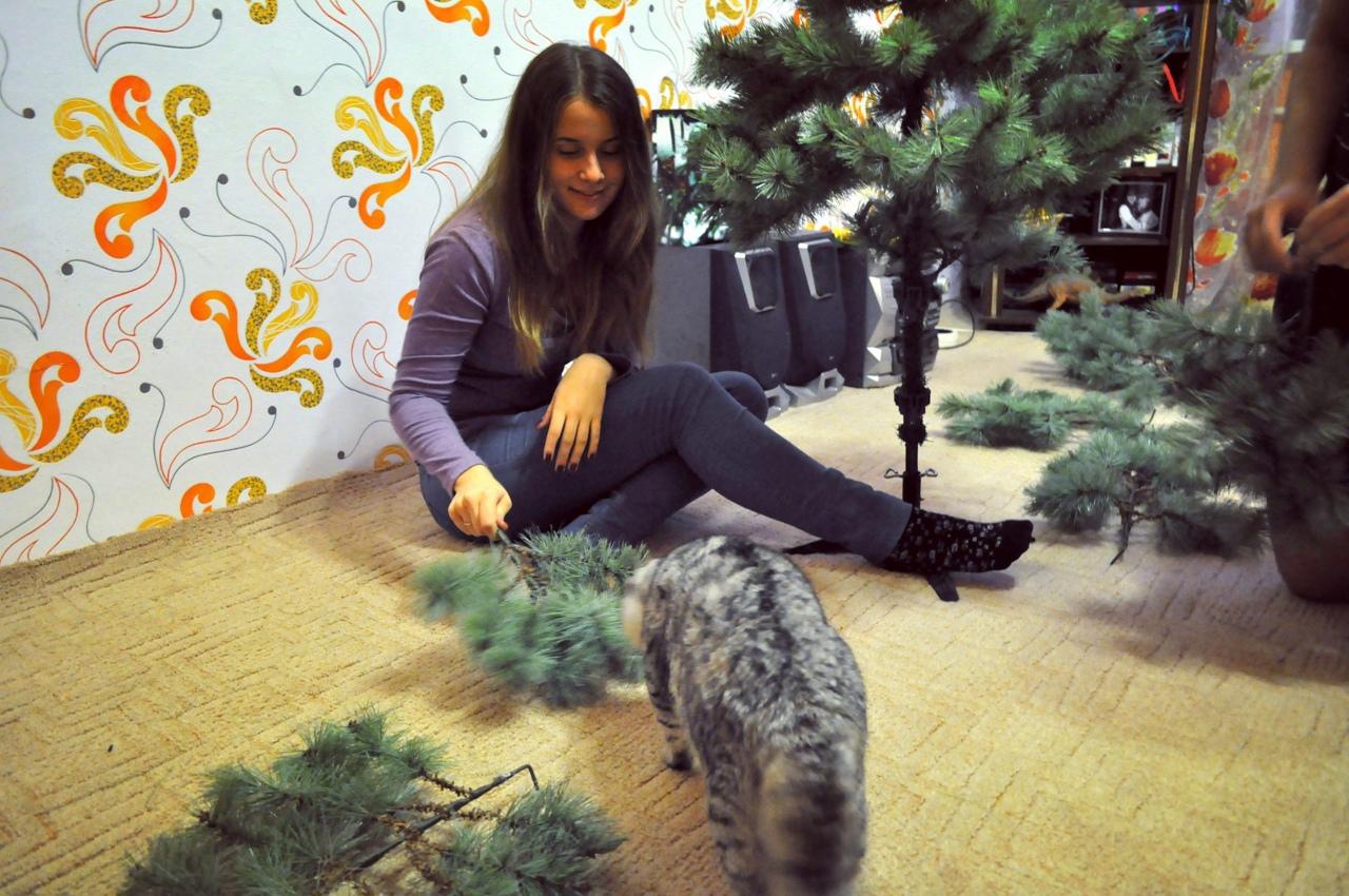 фото из альбома Катерины Лавровой №10