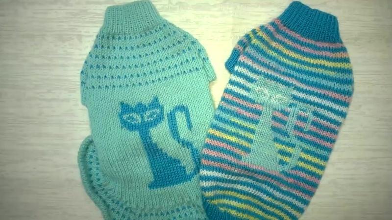11 Как связать свитер и платье для кошки сфинкс