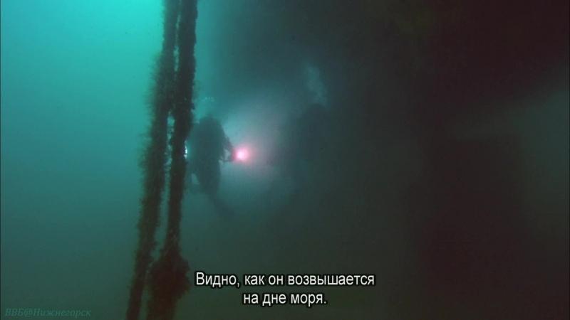 BBC Океаны 1 Море Кортеса Калифорнийский залив Познавательный природа путешествие 2008