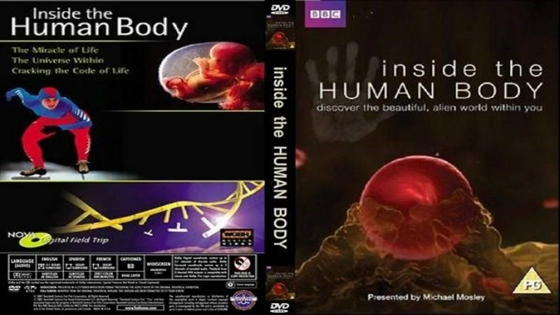 Внутри человеческого тела 01 серия Inside the human body 2011 HD 720р Перевод ДиоНиК