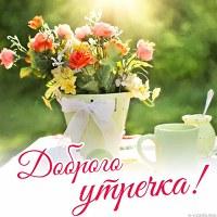 Фотография профиля Светланы Новосёловой ВКонтакте