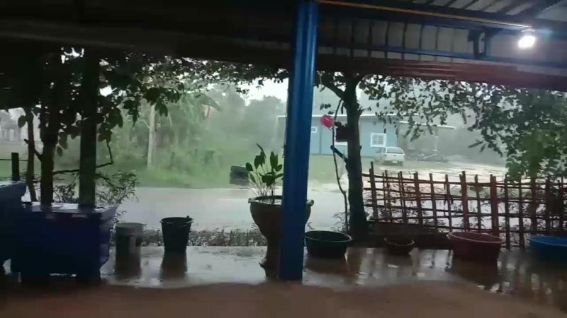 Тропический дождь Таиланда