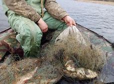Ловил рыбку, а поймал – штраф