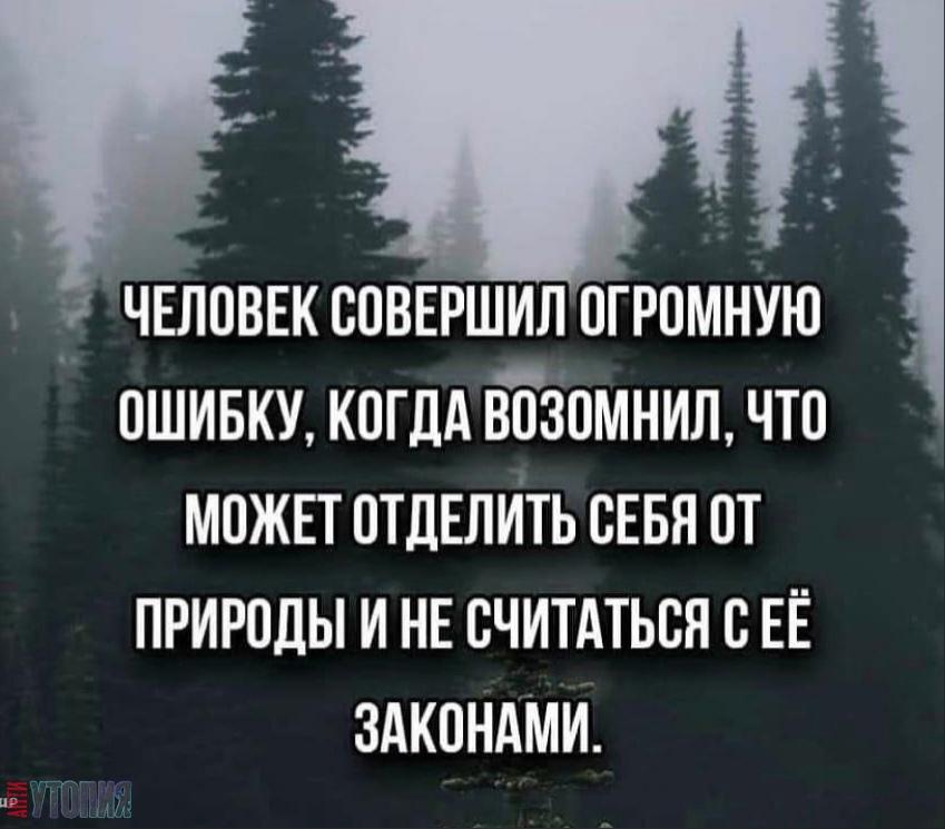 АНТИУТОПИЯ  УТОПИЯ 147706