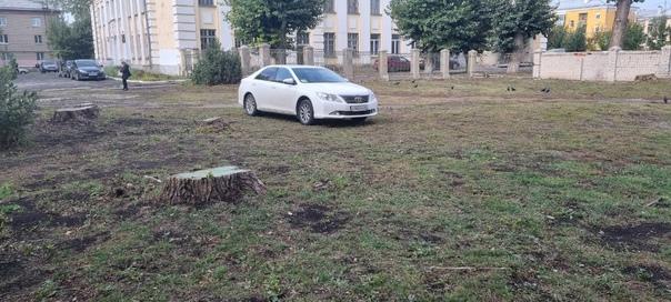 Прислали фото, парковкой на газоне не удивишь, но пишут ч...