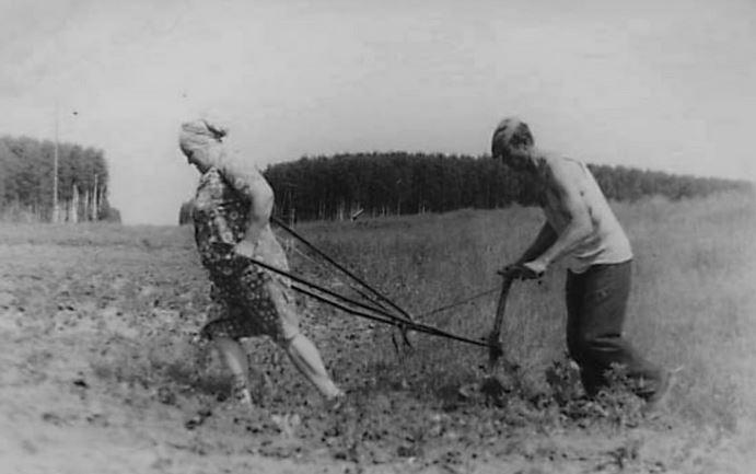 Сталин принял Россию с сохой, а оставил... с бабой, запряжённой в плуг