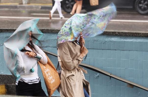 Желтый уровень погодной опасности объявлен в Москв...