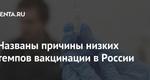 Названы причины низких темпов вакцинации в России: Общество: 62068