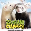 Ручной-Зоопарк Смоленск