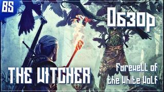 Обзор модификации The Witcher 2 - Farewell of the White Wolf   Обращение к зрителям!