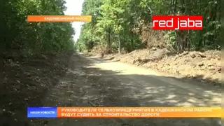 Мужчина в Мордовии расчистил лесную дорогу и стал фигурантом уголовного дела