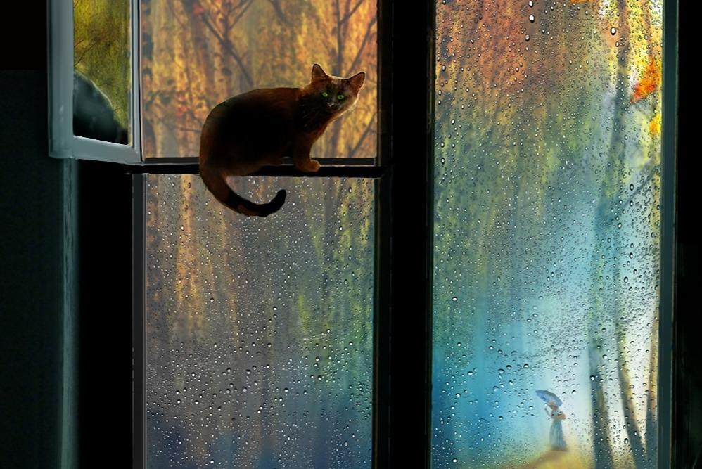 Открытки, открытка вечер за окном