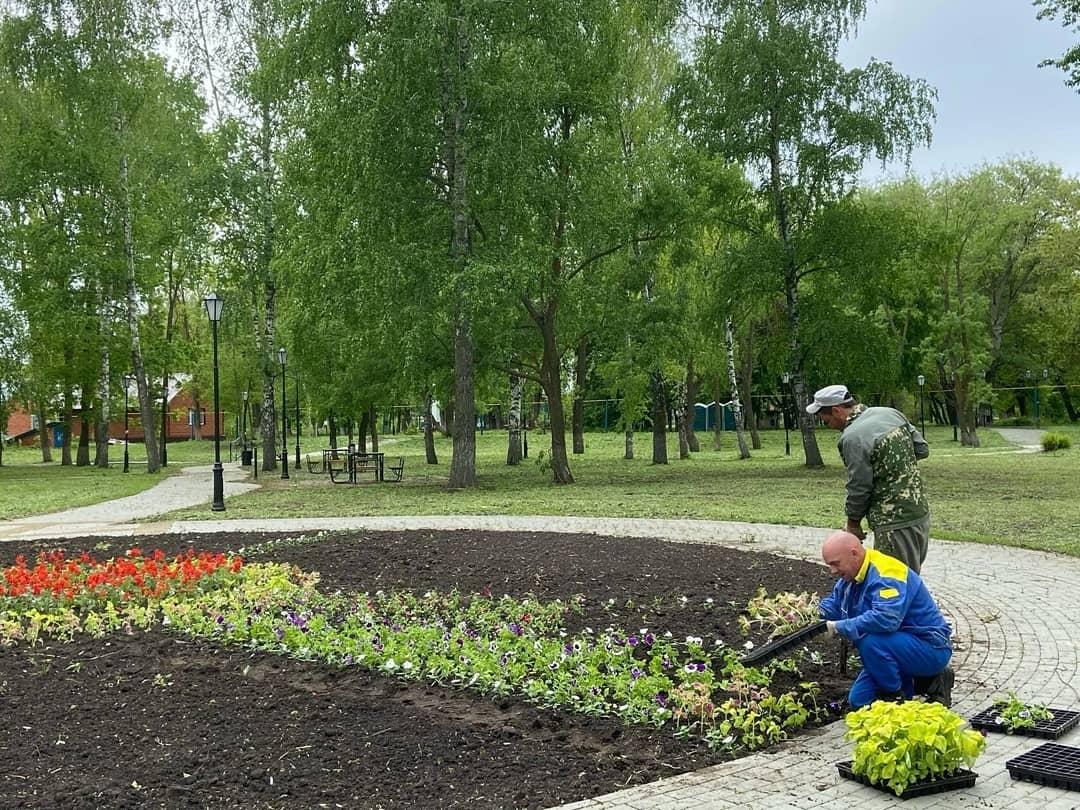 Вчера в городском парке культуры и отдыха Петровска начались работы по формированию и оформлению цветочных клумб