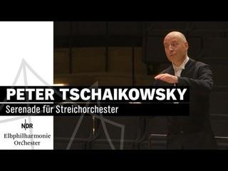 Tschaikowsky: Serenade für Streichorchester mit Paavo Järvi | NDR Elbphilharmonie Orchester
