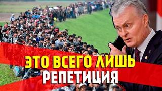 Литва застонала под напором мигрантов