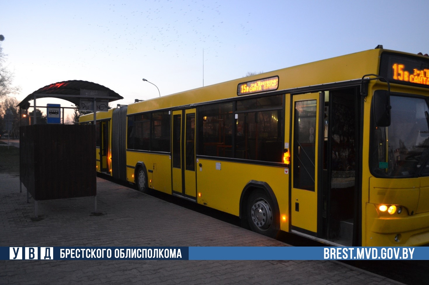 В Бресте в автобусе упала пенсионерка