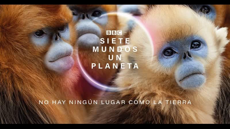 BBC Семь миров одна планета 2019 г Документальный Научно познавательный 52 мин