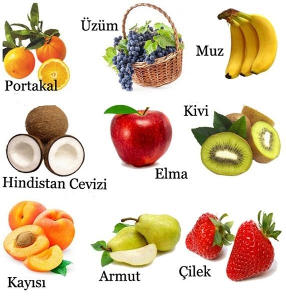 аппараты учим турецкий с картинками махровые
