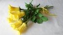 Голландские розы из гофрированной бумаги, МК